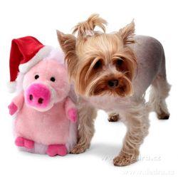 Plyšová hračka pro psy