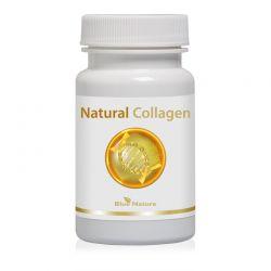 Natural collagen: rybí kolagen + šípek + organická síra (MSM)